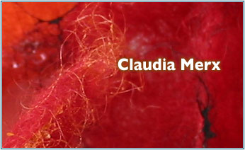 Intro Claudia Merx